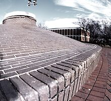 Frontside Shuv by O J