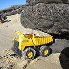 Big Yellow Dump Truck Saves the Whale! by Carol James