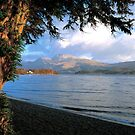 Loch Lomond by derekwallace