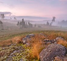 August morning by Veikko  Suikkanen