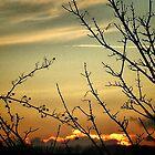 Autumn Sunset by naturelover