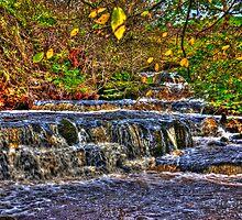 Waterfalls at Kearton (HDR) by Trevor Kersley