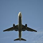 The Overhead Plane  by cookarelli