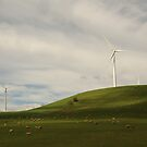 WIND FARM by MARKATMELB