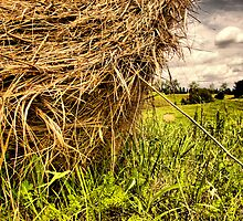 straw.. by Russ Styles