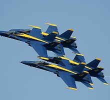 The Blue Angels by Marija