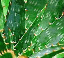 Aloe Vera by DONNABENTLEY