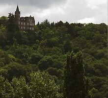 A Large House above the Rhine by Andrew  Bailey