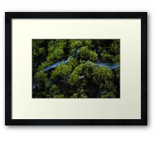 In the moss Framed Print
