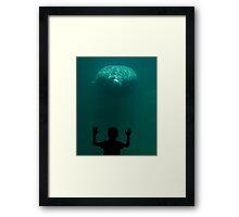 Curiousity Framed Print