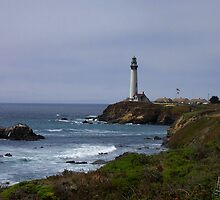 Pigeon Point Lighthouse by LynnL