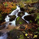 Boulder Brook by Alex Burke