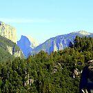 """""""Yosemite Valley"""" by Lynn Bawden"""