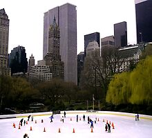 skates in the states by KathleenAnn