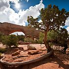 Arches 1 by Jacinthe Brault