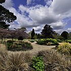 """""""Grass"""" - Exbury Gardens New Forest Hampshire. by silvcurl09"""