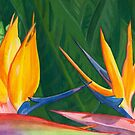 birds of paradise by Leeanne Middleton