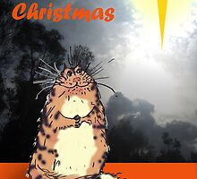 Happy Christmas, Christmas star and cat by Mary Taylor