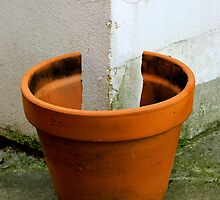 POT by Raoul Isidro