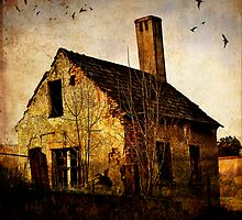 Vacant by Geraldine (Gezza) Maddrell