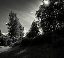 In The Darkness by Danuta Antas