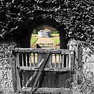 Secret Garden by Dave Godden