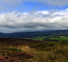 Exmoor Panorama by Rob Hawkins
