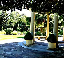 Greek Garden by uomodifoto