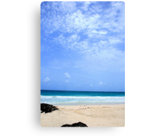 such a beautiful world Canvas Print