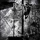 Fence Post B&W by Karirose