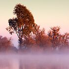 Lake Mulwala impression 5 by Hans Kawitzki