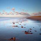 Spurn Point shoreline by Carl Mickleburgh