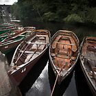 Boats, Knaresborough by Dave Milnes