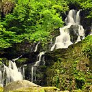 Torc waterfall. by Finbarr Reilly