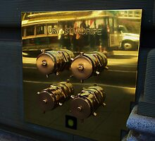 The Fire Hydrant Reflection by Stephen Burke