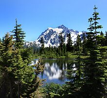 Mt. Shuksan  by Kelley Shannon