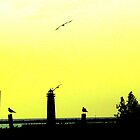 Muskegon, MI Lighthouse - Yellow-Green hues by Deb  Badt-Covell