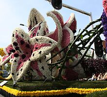 "Bloemencorso (a Dutch word) means ""flower parade"",  by Moonen"