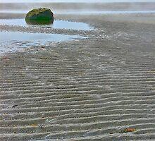 Mavillette Beach III by David Davies