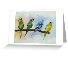 Four Parakeets Greeting Card