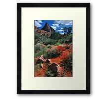 Trail to the Watchman Framed Print