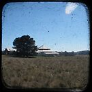 Deeargee Woolshed - TTV by Kitsmumma
