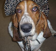 Buddy in Leopard Hat by starlite811