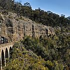 Zig Zag Railway | Lithgow | New South Wales | Australia by DavidIori