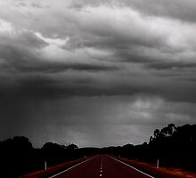 The Road to Rain by Penny Kittel
