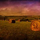 More Hay by ajgosling