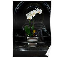 Orchidaceous  Poster