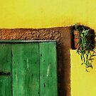 Doors by Aleksandra Misic