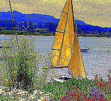 A Saturday on Morro Bay by Alexandra Morris