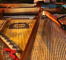 The Tuning by BillCMartin